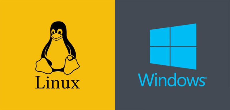 سرویس های هاستینگ یا میزبانی وب به طور معمول با دو سیستم عامل لینوکس و ویندوز به کاربران ارائه میشود. استفاده از هر کدام از این سرویس ها به هدف کاربر از ایجاد سایت و همچنین برنامه و زبان برنامه نویسی سایت کاربر بستگی دارد.